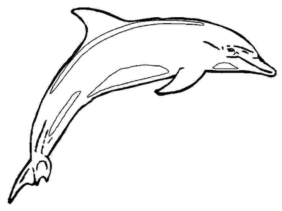 dolphin pics to print dolphin free printable templates coloring pages to dolphin print pics