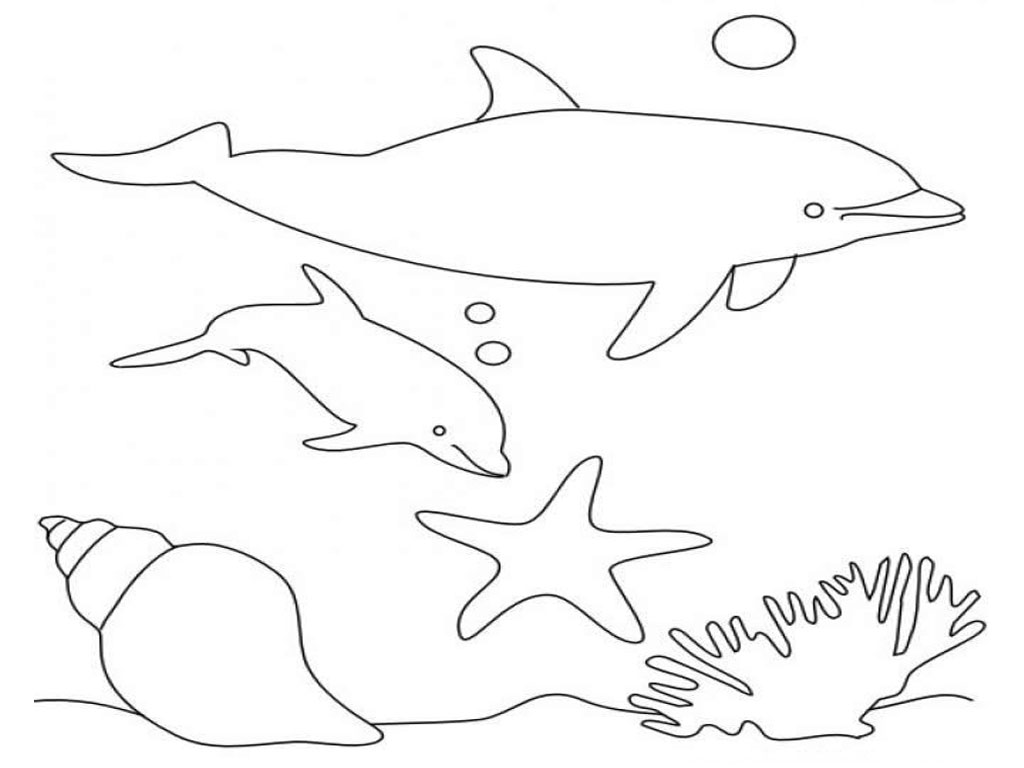 dolphin printable coloring pages dolphins to color for children dolphins kids coloring pages coloring dolphin printable pages