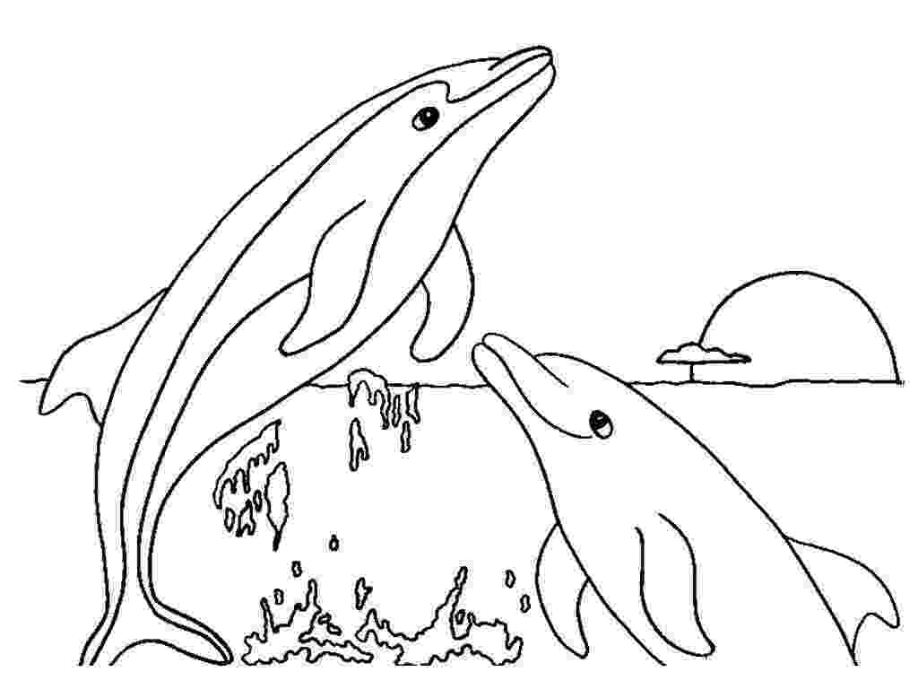 dolphins coloring sheets free printable dolphin coloring pages for kids dolphins coloring sheets