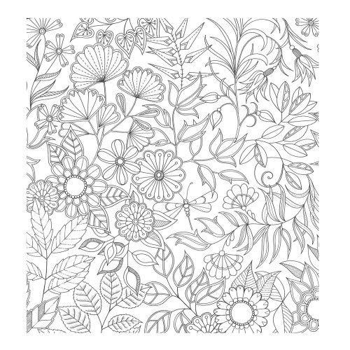 download coloring book secret garden hummingbird secret garden coloring pages print coloring download garden book coloring secret