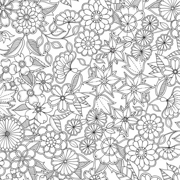 download coloring book secret garden secret garden a spread of flowers enlightened coloring secret download book garden coloring