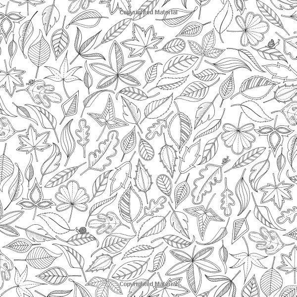 download coloring book secret garden tree house coloring pages getcoloringpagescom book download secret coloring garden