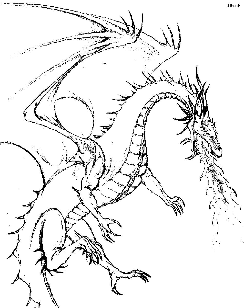dragon coloring pages pdf dragon coloring pages free printable pdf pages coloring dragon