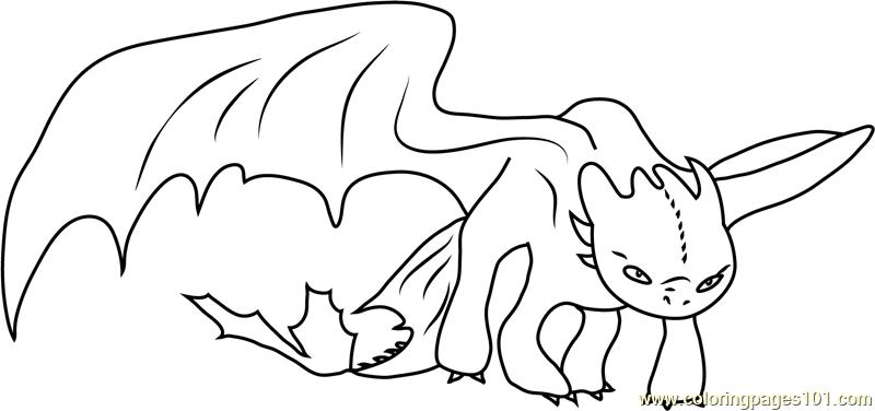 dragon coloring pages pdf new dragon adult colouring 5 page pdf booklet now pages coloring dragon pdf