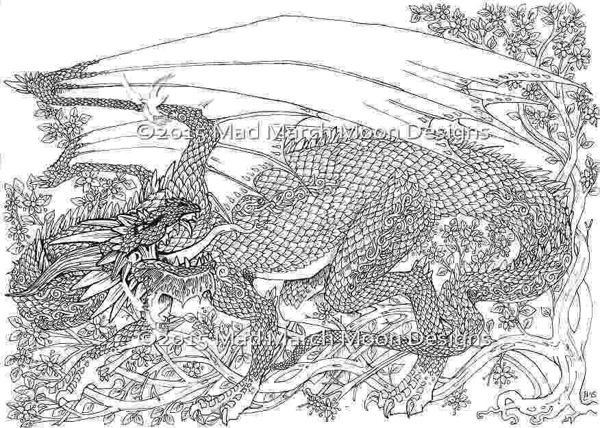 dragon coloring pages pdf new dragon adult colouring 5 page pdf booklet now pdf dragon pages coloring