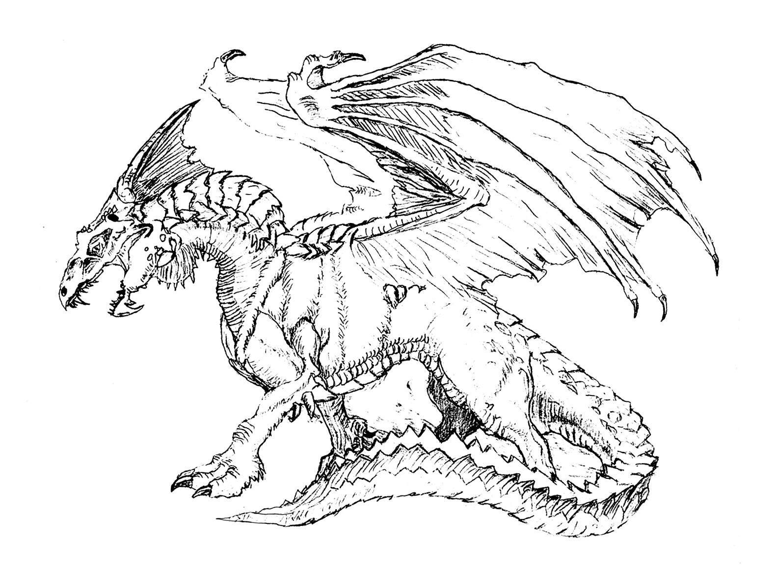 dragon pictures for kids homey ideas dragons for coloring pages draw a simple for kids dragon pictures