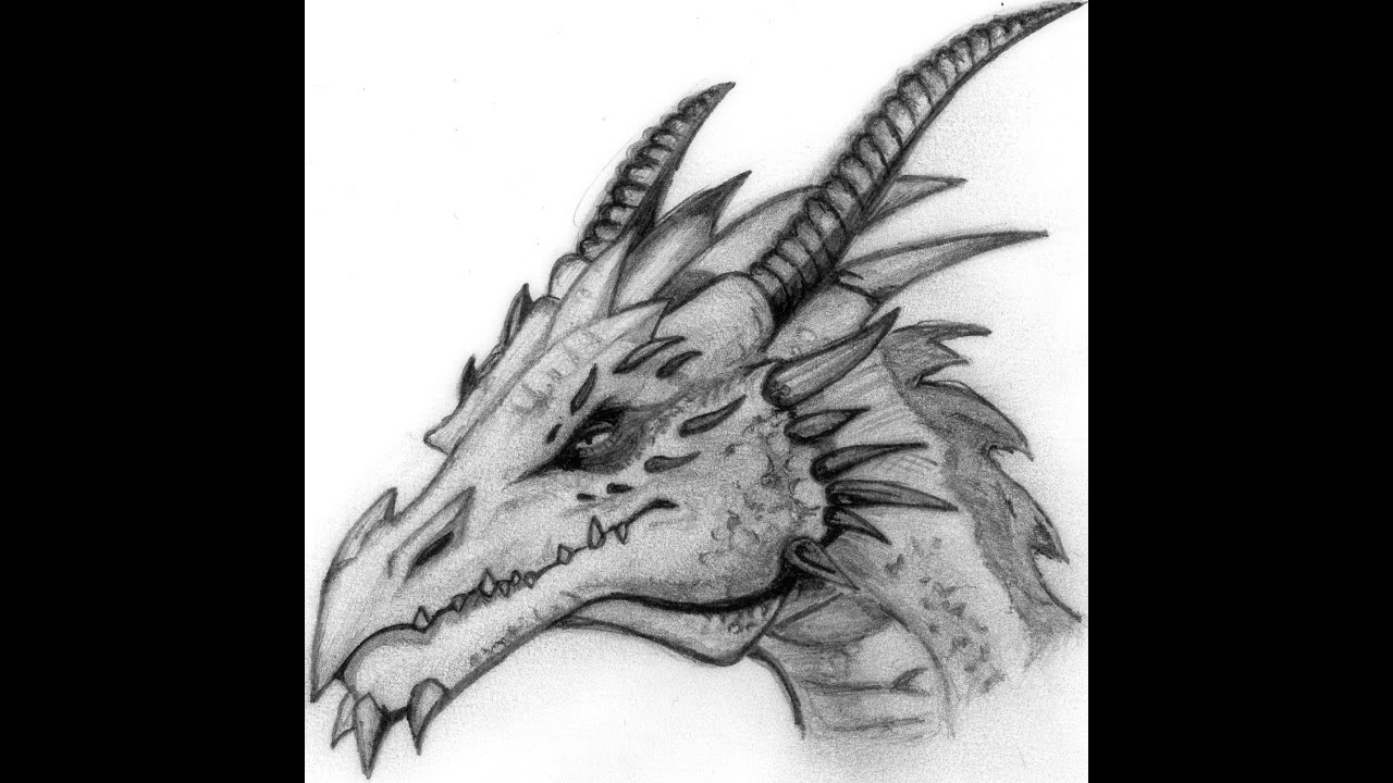 dragon pictures to trace 1000 images about coloring fantasy on pinterest to trace pictures dragon