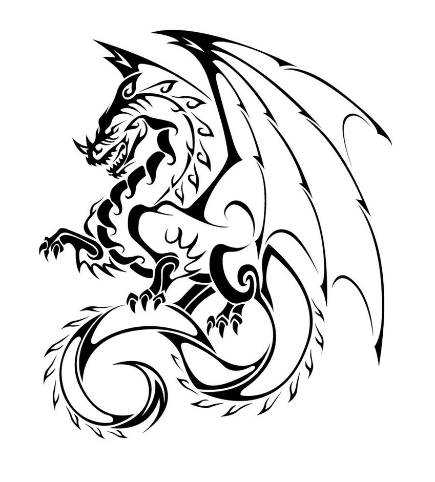 dragon pictures to trace dragon pictures to trace clipart best dragon pictures trace to