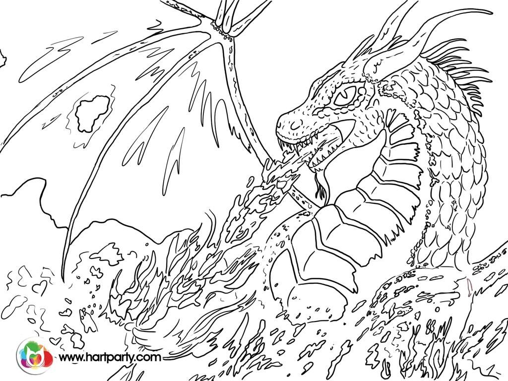 dragon pictures to trace dragon pictures to trace clipart best trace to pictures dragon