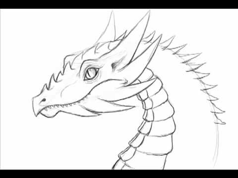 dragon pictures to trace how to draw a dragon head by thebrokenpuppet youtube dragon trace pictures to