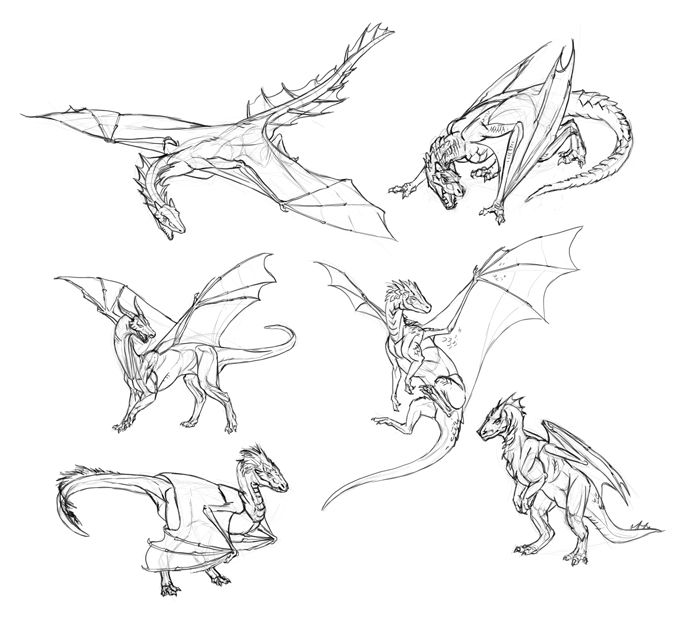 dragon pictures to trace how to draw dragons for kids step by step dragons for trace dragon to pictures