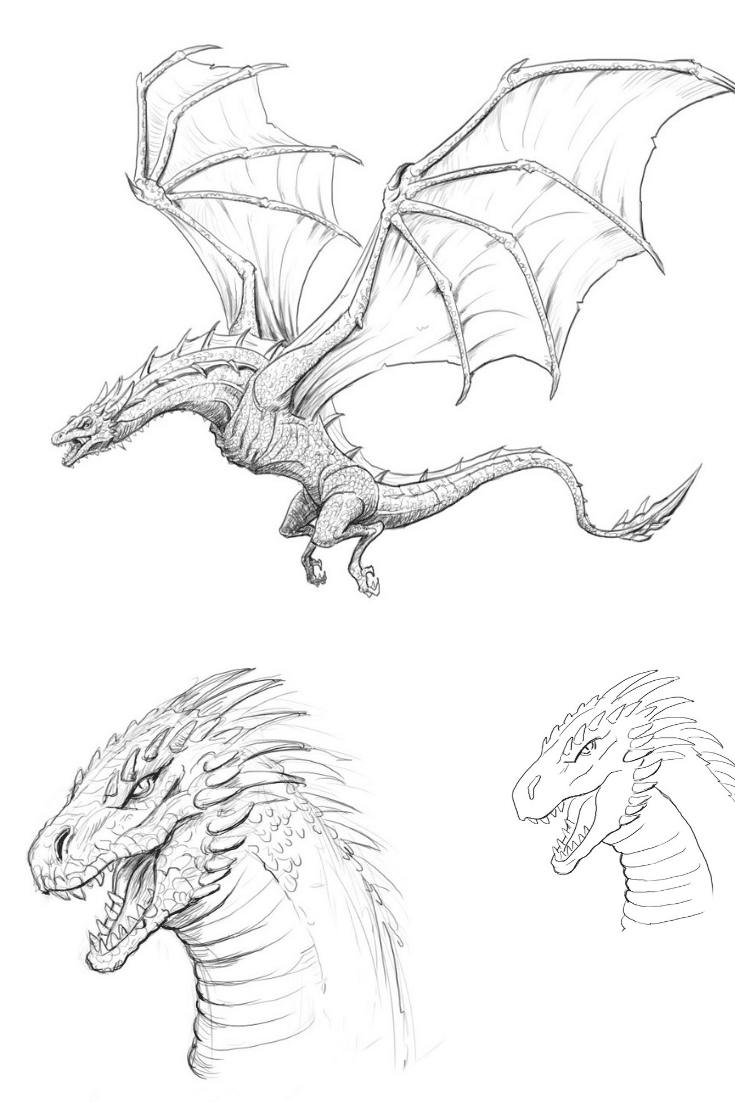 dragon pictures to trace how to draw dragons step by step instructions from tooth dragon to pictures trace