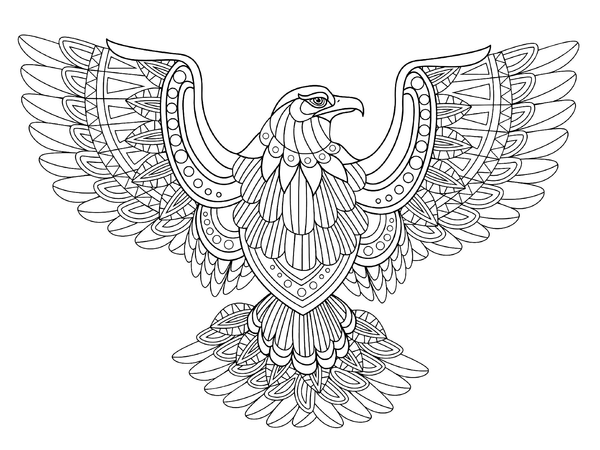 eagle adult coloring pages adult coloring book printable coloring pages coloring pages coloring pages adult eagle