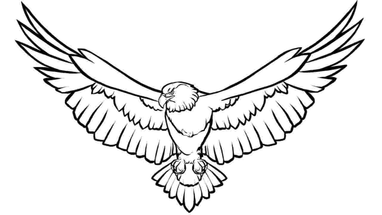 eagle color sheet free printable bald eagle coloring pages for kids color eagle sheet