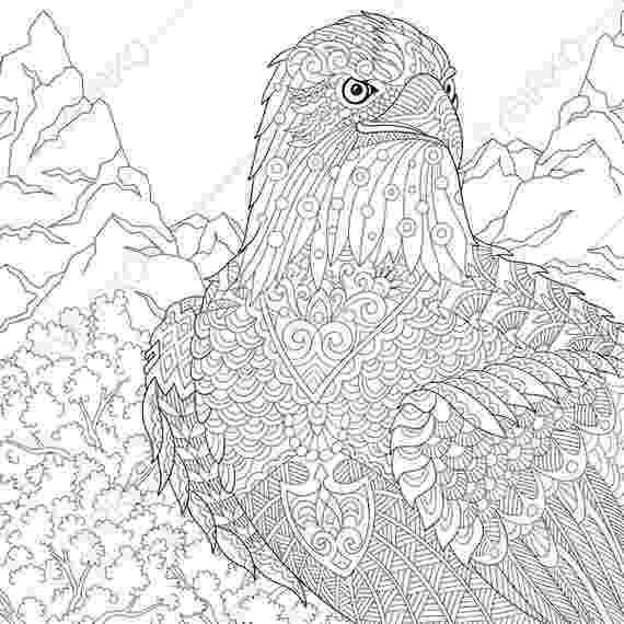 eagle color sheet rules of the jungle printable pictures of bald eagle sheet color eagle 1 1