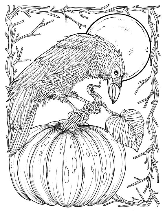 electronic coloring book for adults fall crow digital coloring page thanksgiving harvest adult for coloring electronic book adults