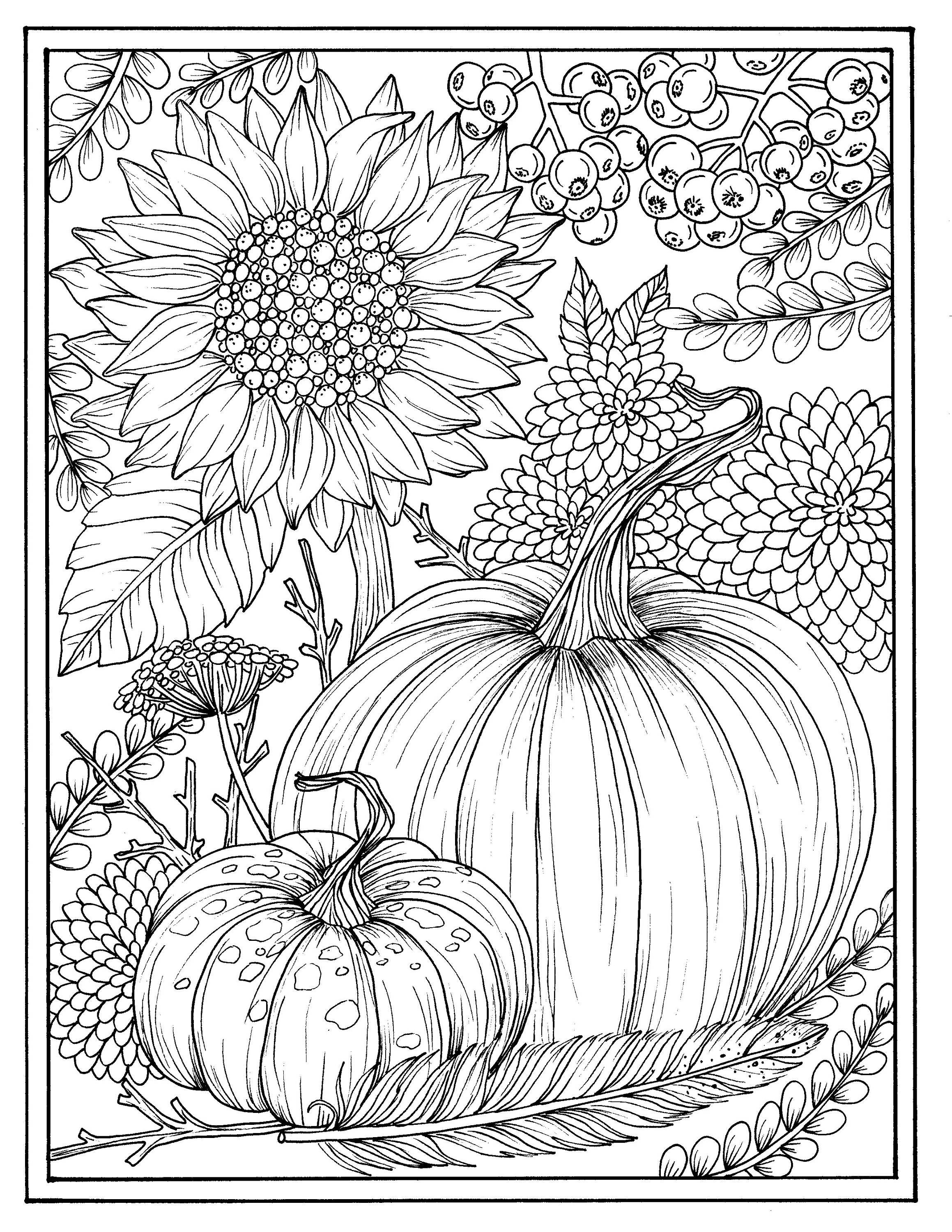 electronic coloring book for adults fall flowers and pumpkins digital coloring page electronic adults coloring for book