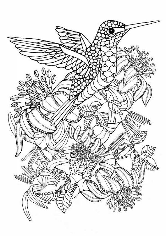 electronic coloring book for adults hummingbird printable coloring pages digital download of adults coloring book for electronic