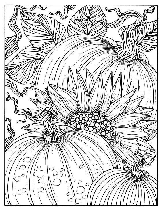 electronic coloring book for adults pumpkins and sunflower digital coloring page fall adult adults electronic coloring for book