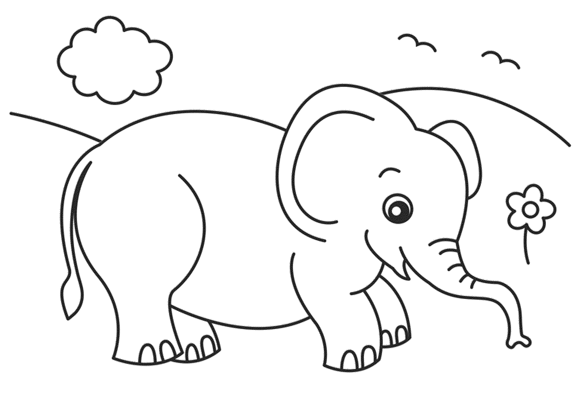 elephant coloring page transmissionpress baby elephant coloring pages elephant coloring page