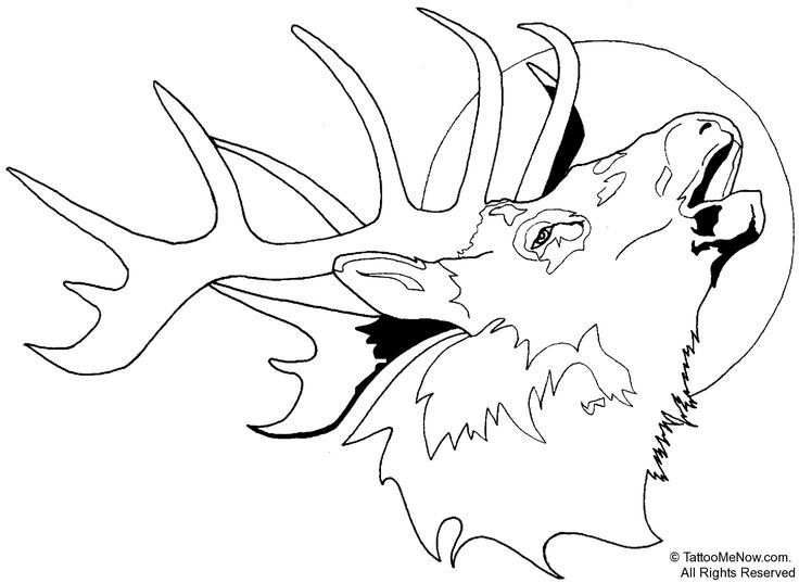 elk pictures to color bull elk coloring pages download print online coloring pictures to color elk
