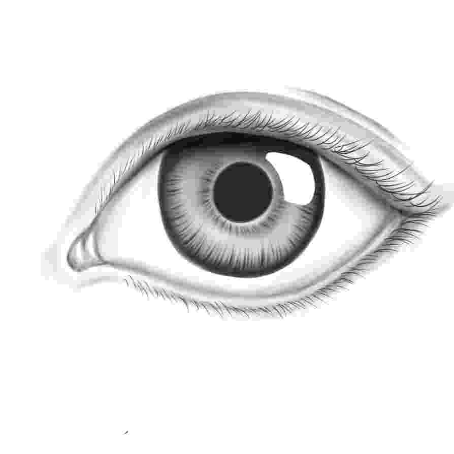 eyes for coloring eyes coloring page coloringcrewcom for eyes coloring