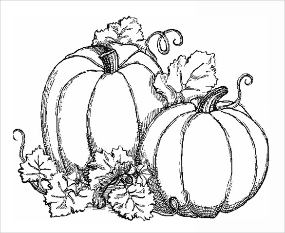 fall harvest coloring pictures fall harvest coloring pages to print loving printable harvest fall coloring pictures