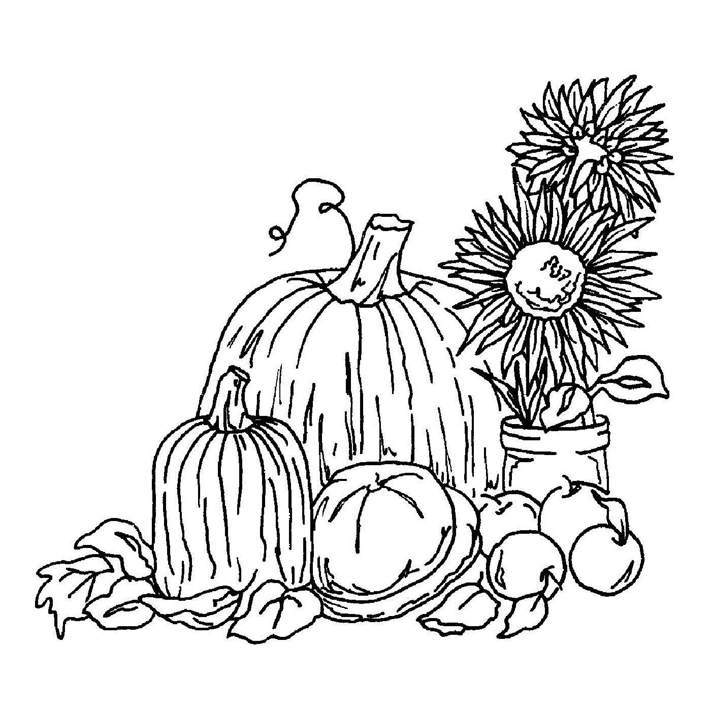 fall harvest coloring pictures harvest coloring pages getcoloringpagescom harvest pictures fall coloring