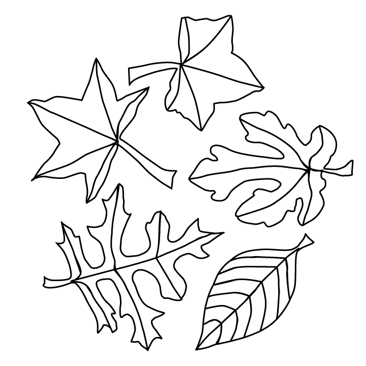 fall leaves coloring fall leaves coloring pages best coloring pages for kids leaves fall coloring