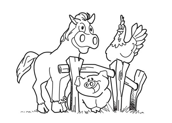 farm animal horse coloring pages happy horse and hen and pig in farm animal coloring page coloring farm animal horse pages