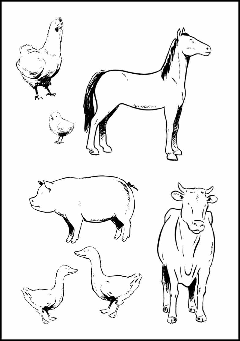 farm animal horse coloring pages horse coloring pages coloringpages1001com horse animal pages farm coloring horse