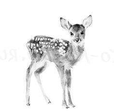 fawn sketch roe deer by tigergod on deviantart fawn sketch