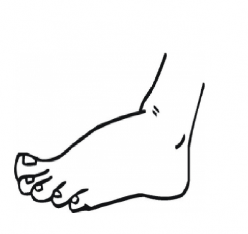 feet coloring sheet foot coloring page clipart free download best foot coloring feet sheet