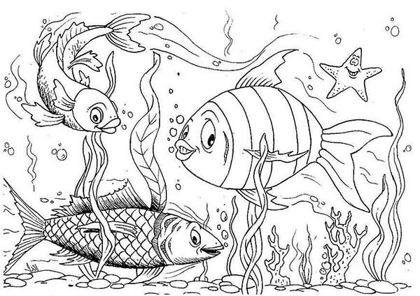 fish aquarium coloring pages happy fishes in fish tank coloring page netart coloring aquarium pages fish