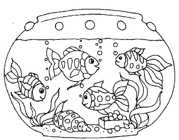 fish aquarium coloring pages various fish inside fish tank coloring page netart coloring pages fish aquarium