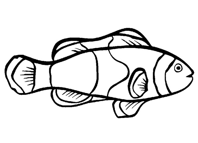 fish color big mouth cartoon fish coloring page sheet fish color