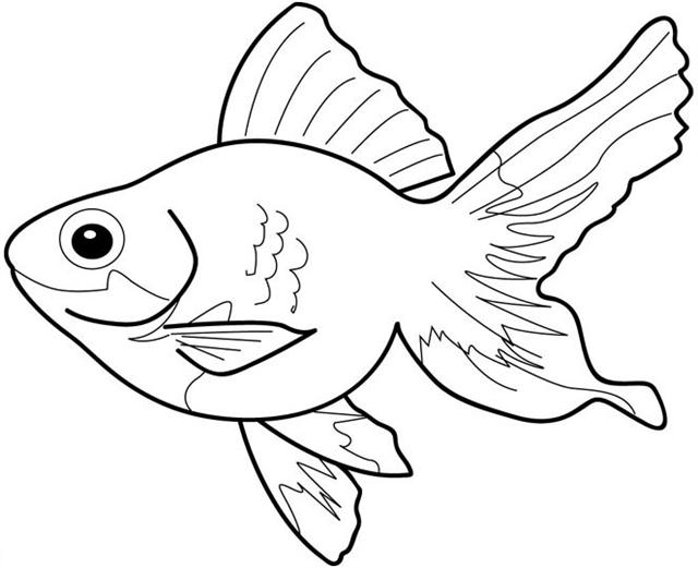 fish color free fish outlines for children download free clip art color fish