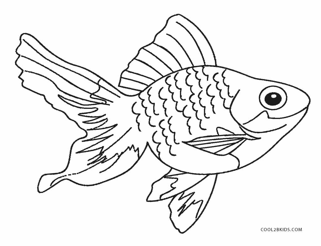 fish color funny fish coloring pages collection 2010 color fish