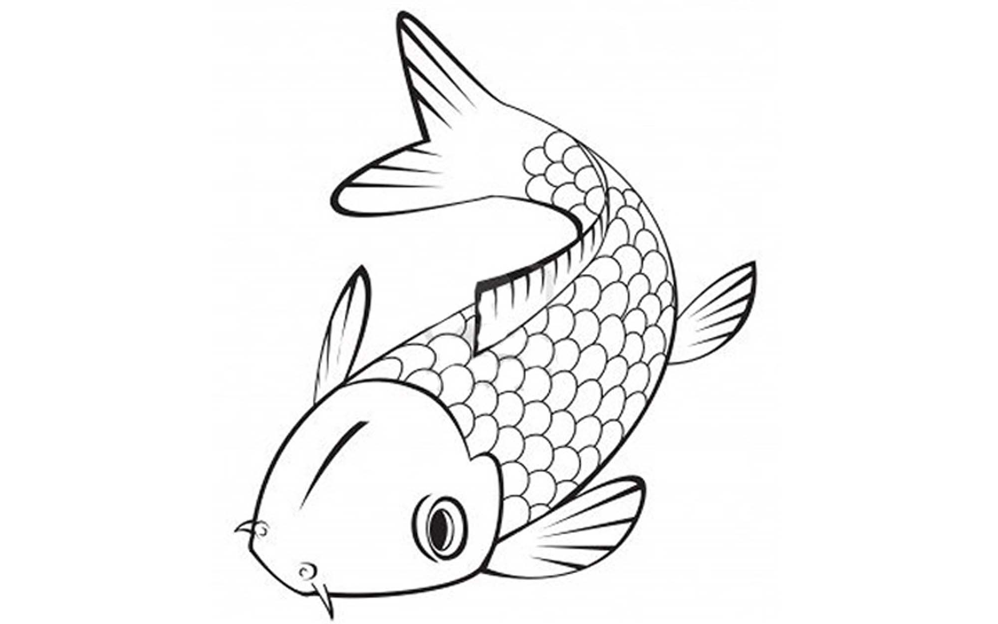 fish color print download cute and educative fish coloring pages fish color 1 1