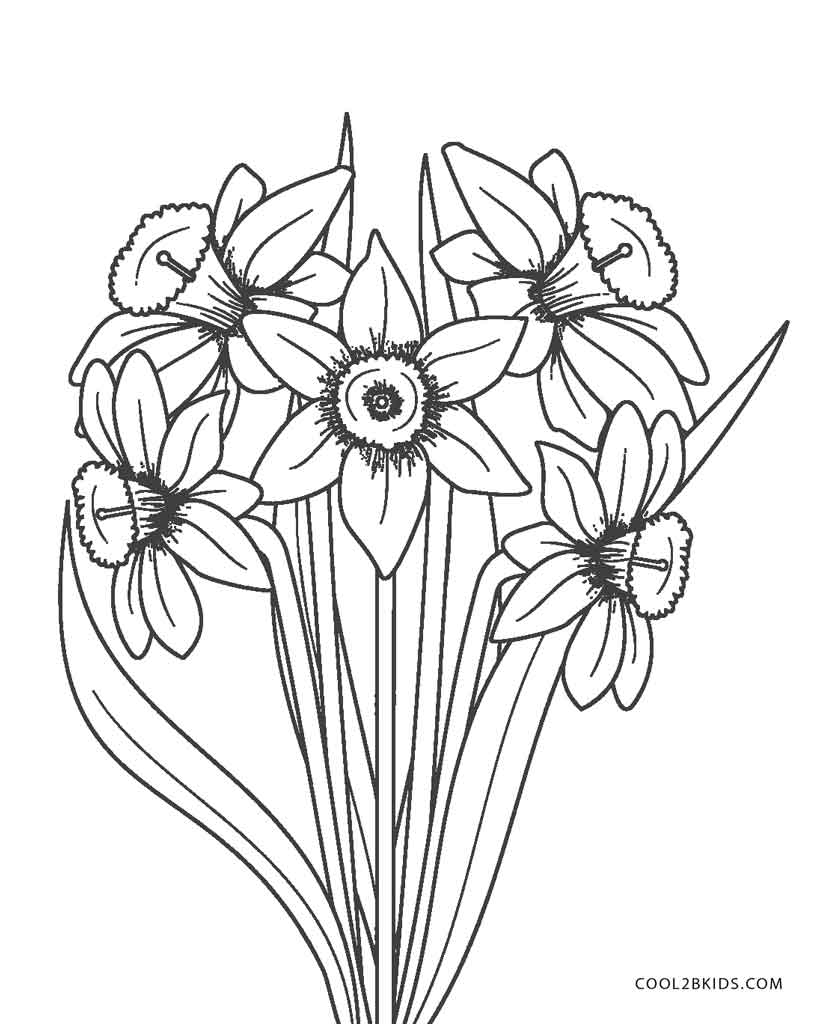 flower coloring pages free printable kids coloring pages flowers coloring pages free pages printable flower coloring