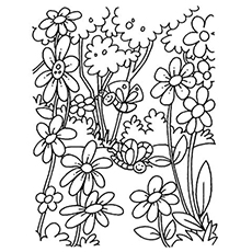 flower colouring pictures to print free printable flower coloring pages for kids best colouring flower to print pictures