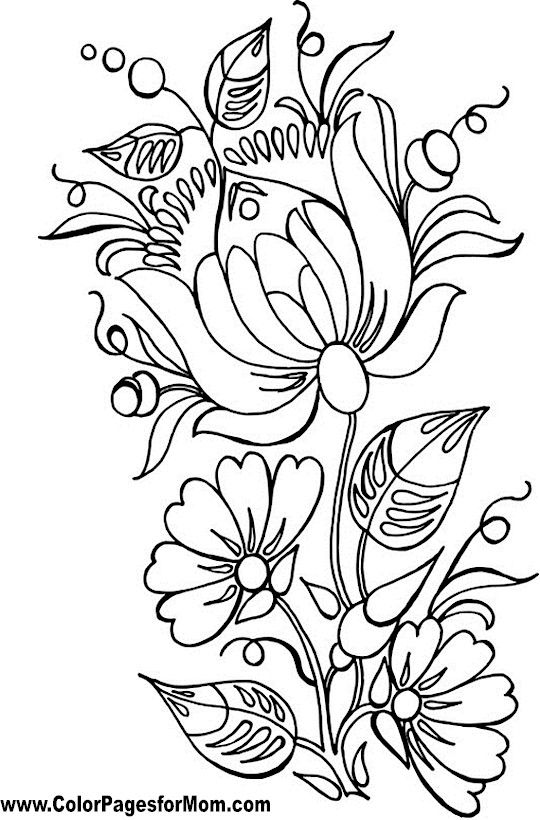 flower patterns to color free coloring pages round up for grown ups rachel teodoro color flower patterns to