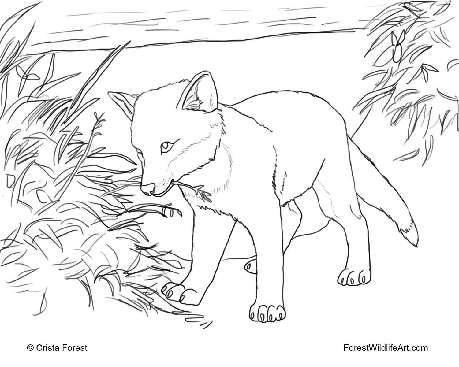 fox coloring pages cute baby fox coloring pages coloring home fox coloring pages