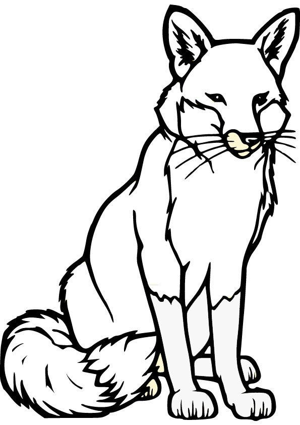fox coloring pages fox coloring pages coloring pages fox