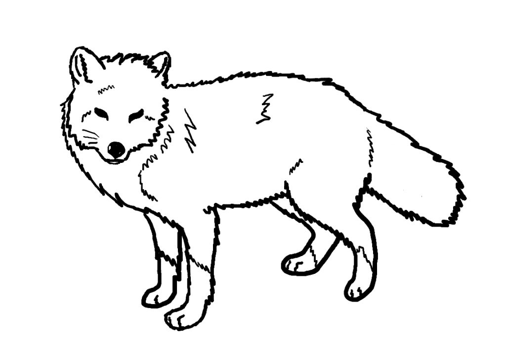 fox coloring pages fox coloring pages free printable pages fox coloring