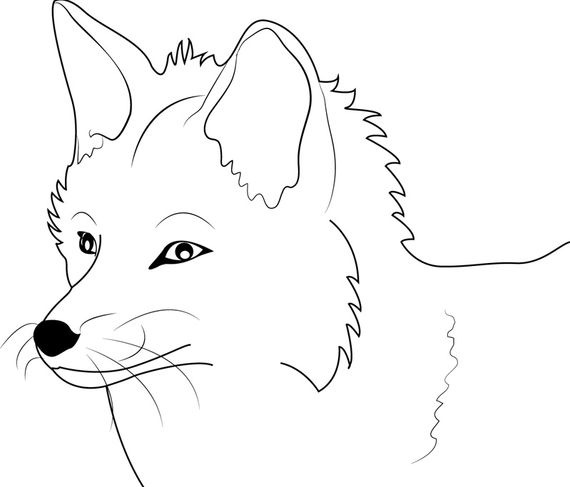 fox coloring pages free printable fox coloring pages for kids pages coloring fox