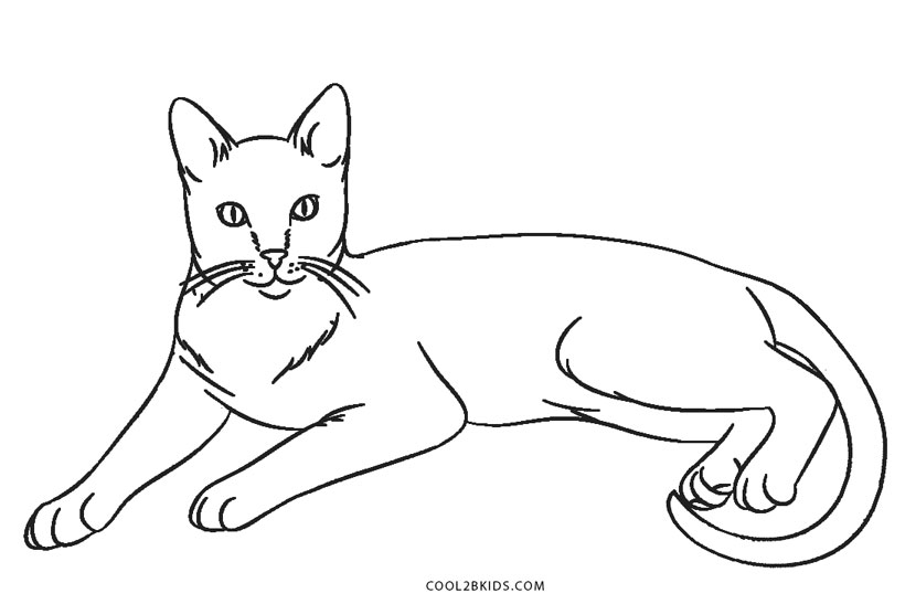 free coloring pictures of cats free printable cat coloring pages for kids cats coloring pictures free of