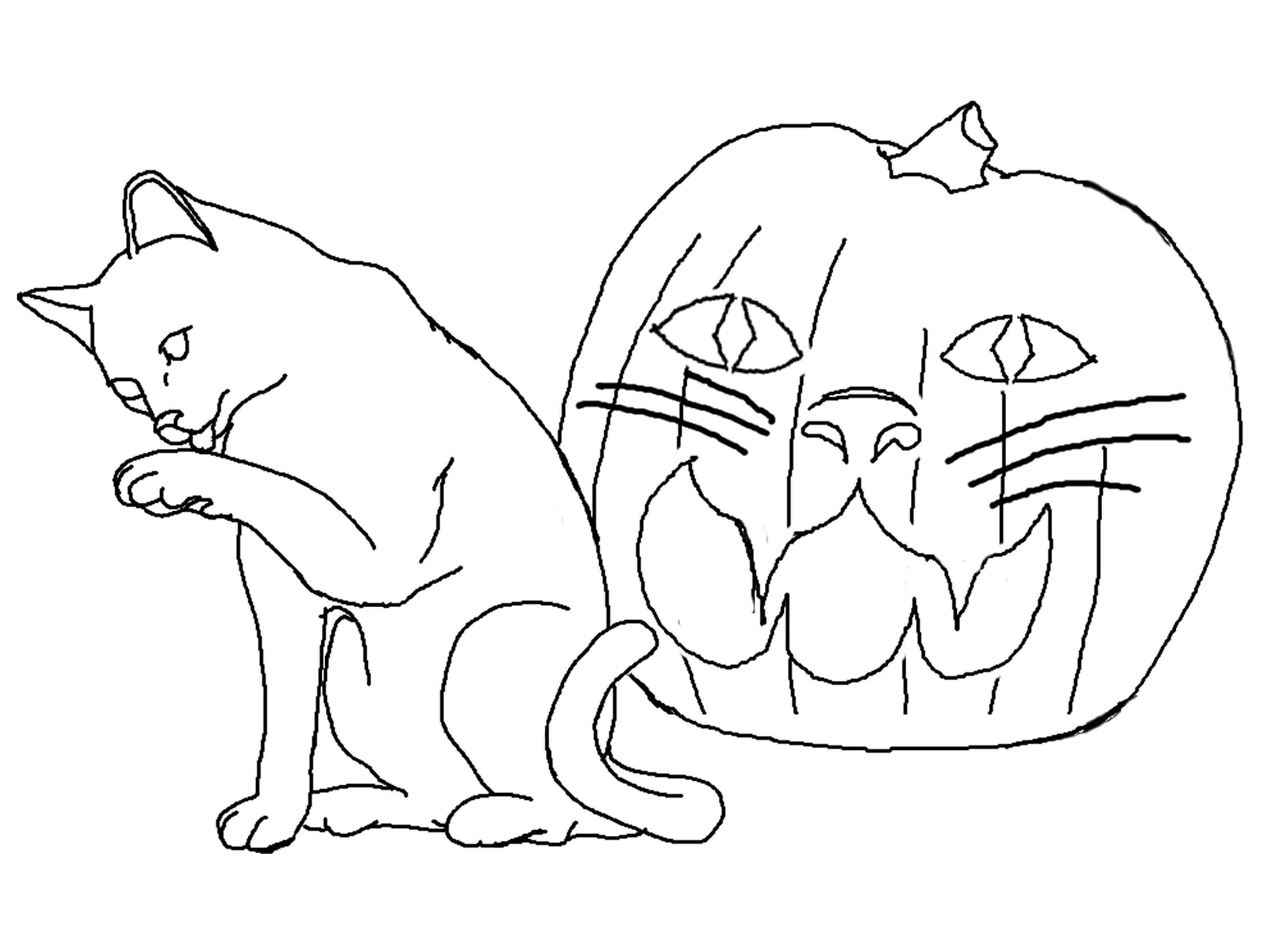 free coloring pictures of cats free printable cat coloring pages for kids coloring free of pictures cats