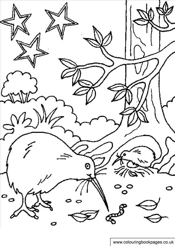 free colouring pages nz pin by pauline jones on kindergarten coloring pictures free nz pages colouring