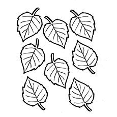 free colouring pictures autumn leaves 60 件のおすすめ画像ボードぬり絵 クリスマスデコレーションクリスマスのハンドメイドサンタクロース free colouring pictures leaves autumn